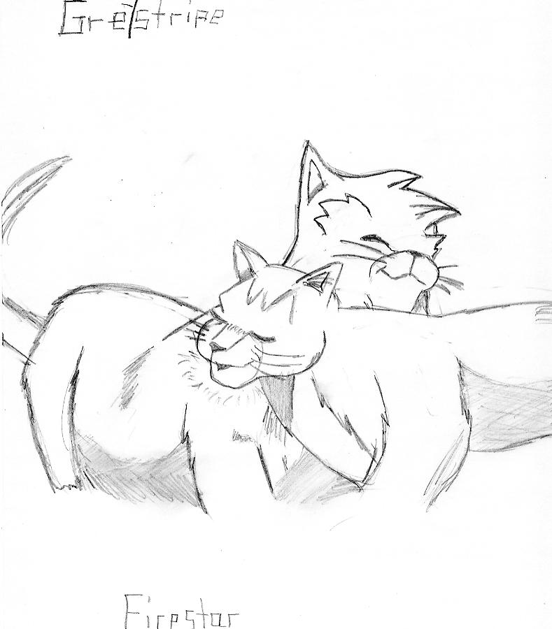 789x900 Greystripe And Firestar! Warriors Warrior Cats And Cat