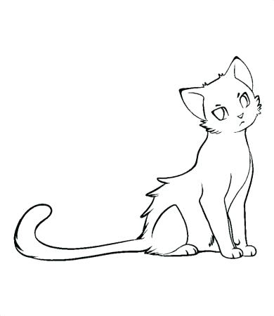 390x450 Warrior Cat Coloring Pages Plus Cats Girl Page