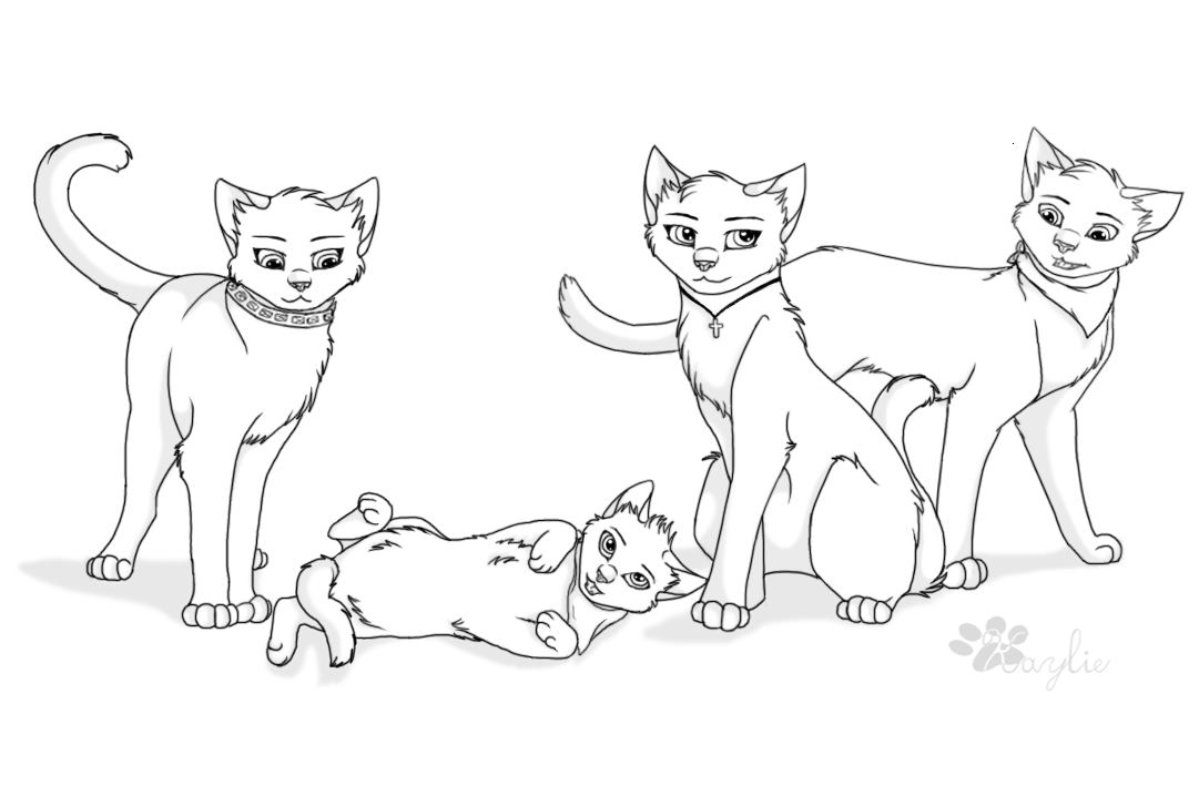 Warriors Cats Drawing at GetDrawings | Free download