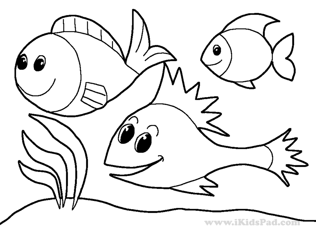 Water Animals Drawing at GetDrawings | Free download