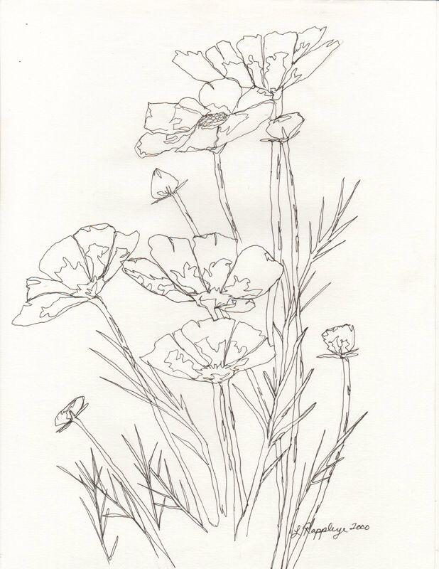 618x800 58 Best Line Drawing Techniques Images On Doodles