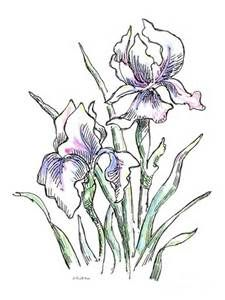 225x300 Rachel Mcnaughton Watercolor Lis Amp Iris Watercolor