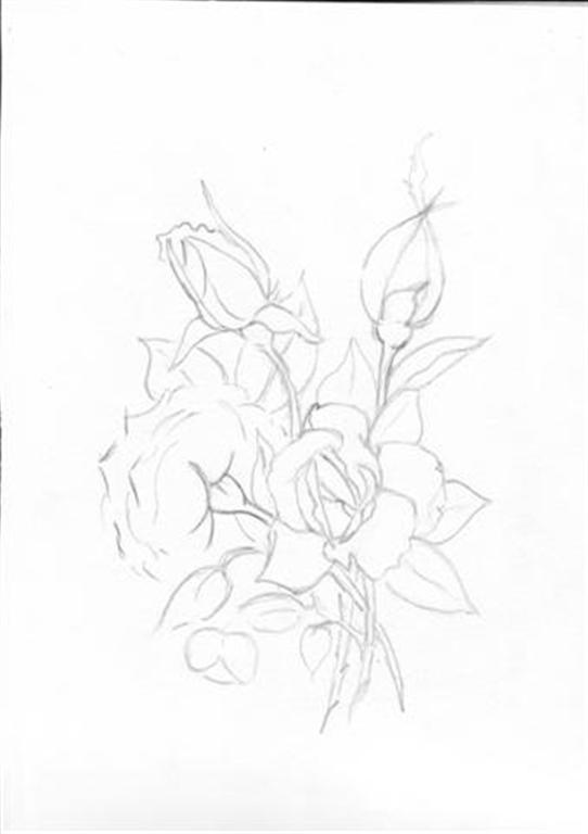 542x768 Water Color Pencil Roses Tutorial