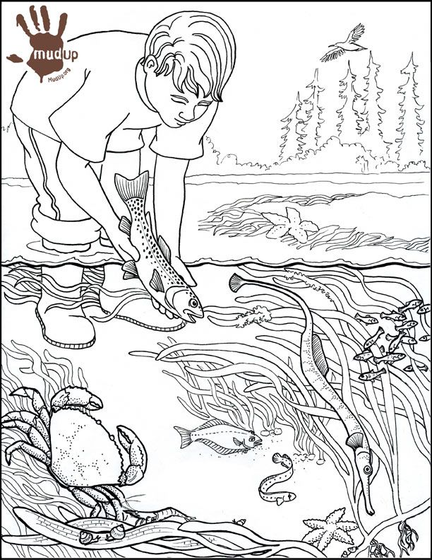 612x792 water pollution coloring pages