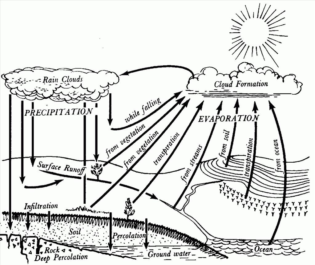 Water Cycle Drawing At Getdrawings Com Free For Personal Use Water