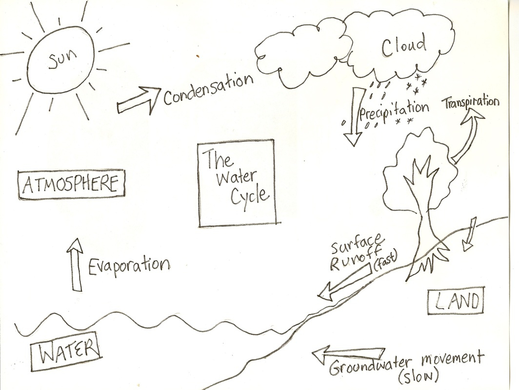 Water Cycle Drawing at GetDrawings.com | Free for personal use Water ...
