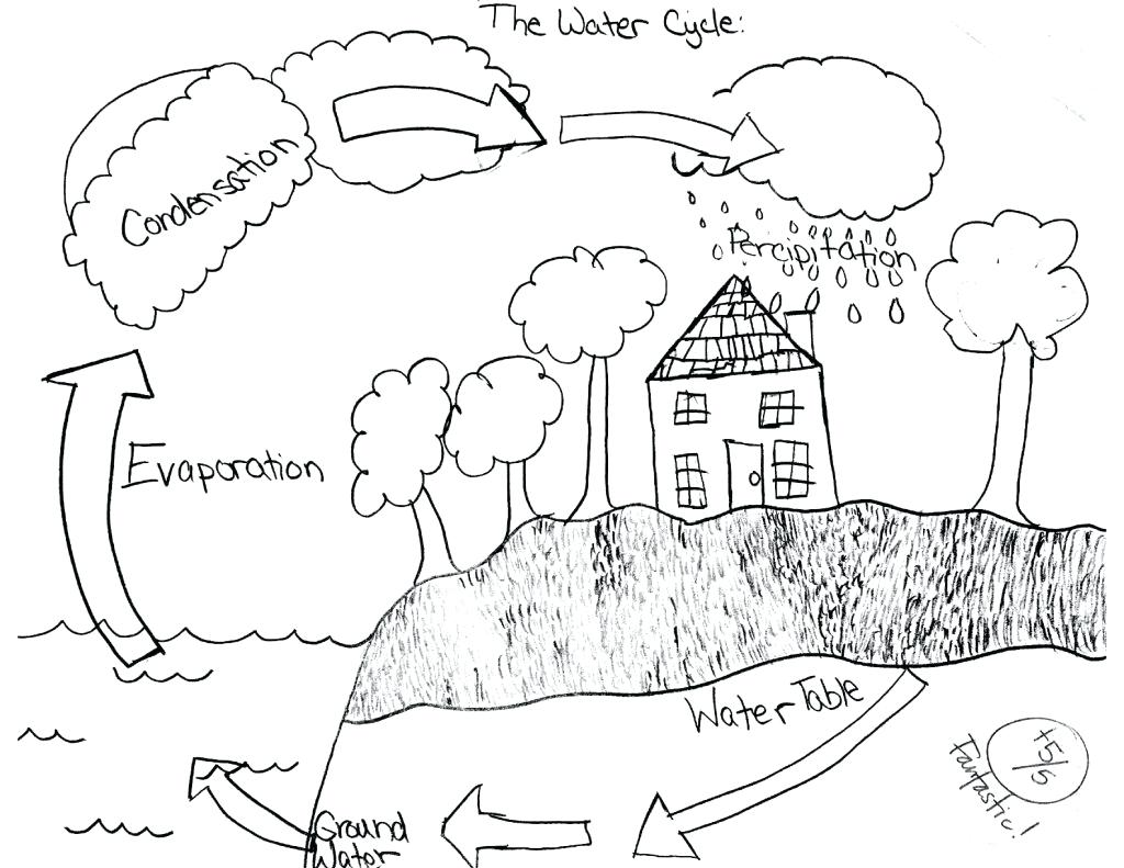 Water cycle drawing at getdrawings free for personal use water 1024x791 worksheet water cycle printable worksheets ccuart Images
