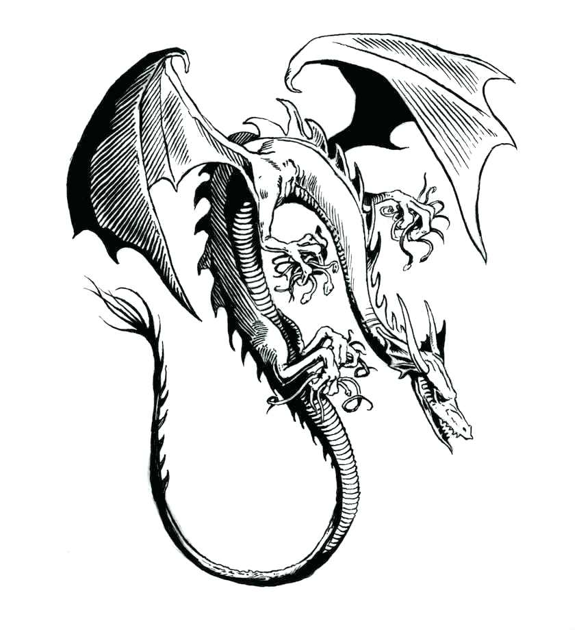 846x920 Chinese Dragon Coloring Pages New Year Dragon Drawing Dragon