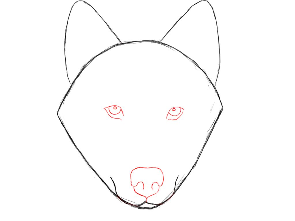 1024x768 How To Draw A Wolf Wolf, Tutorials And Draw Animals