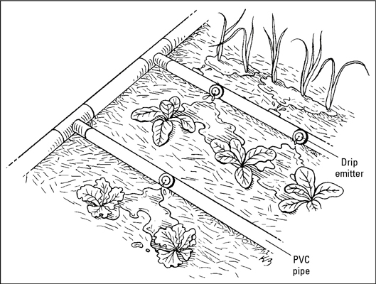 529x400 Watering Systems For Your Vegetable Garden