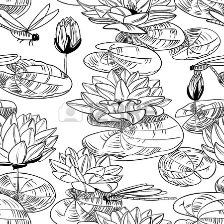 450x450 Water Lily Stock Photos. Royalty Free Business Images