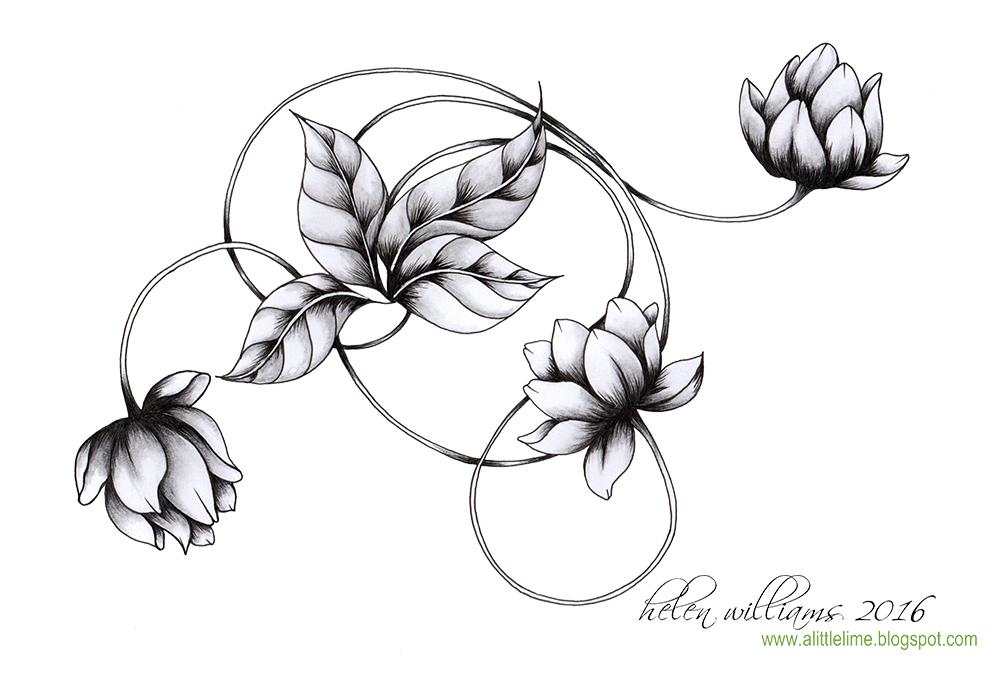 1000x674 Water Lily Swirl