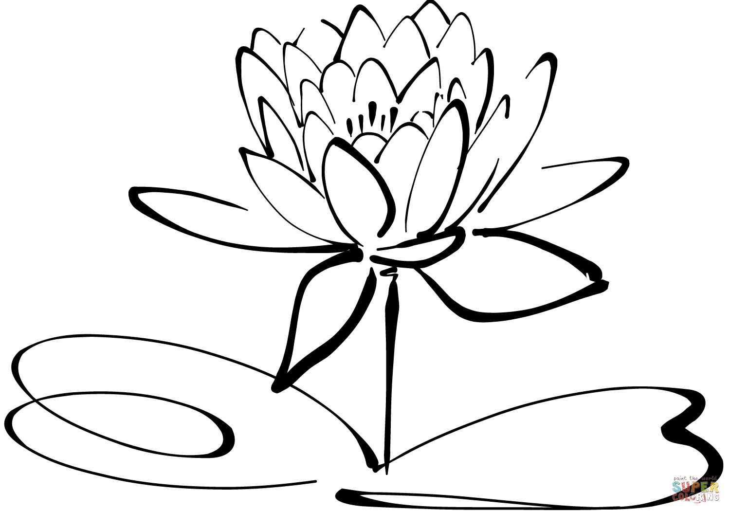 Water Lily Flower Drawing at GetDrawings | Free download