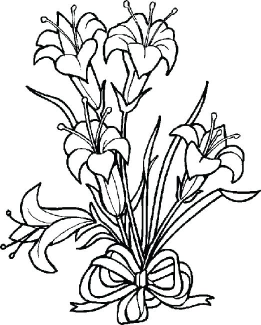 522x650 Awesome Lily Coloring Pages And Lily Coloring Pages 15 Water Lily