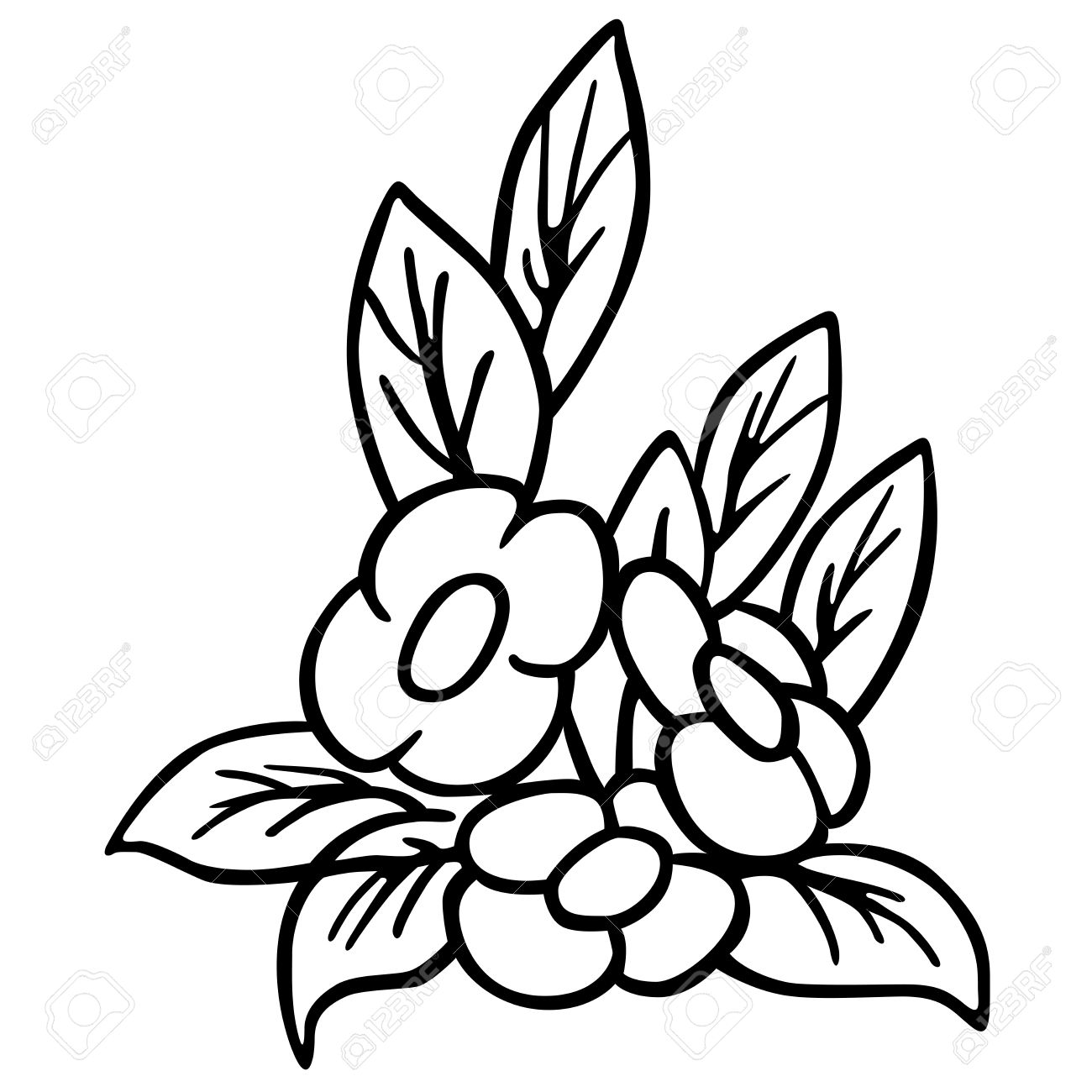 1300x1300 Flower Black And White Cartoon Wallpapers Gallery