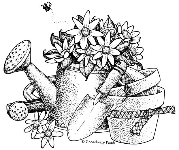621x519 Gooseberry Patch Gardening Kytky Gooseberry Patch