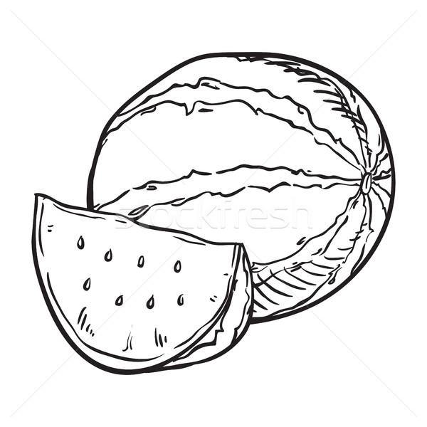 600x600 Hand Drawn Sketch Watermelon Illustration Vector Illustration