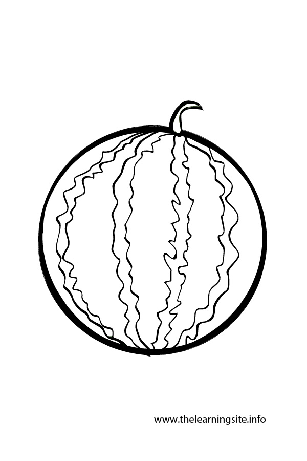 Watermelon Line Drawing At Getdrawings Com Free For Personal Use