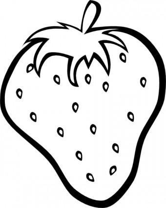 340x425 Melon Clipart Outline