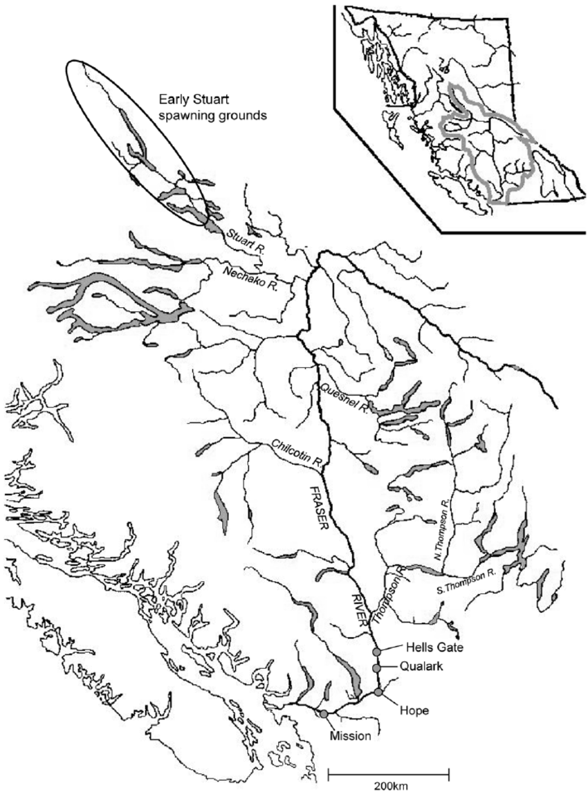 850x1145 Map Of The Fraser River Watershed. Map Of The Fraser River