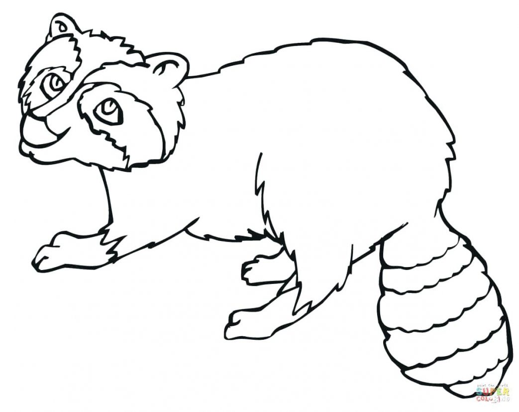 1043x827 Raccoon Waving Hand Coloring Page Pages For Kids Winter Raise