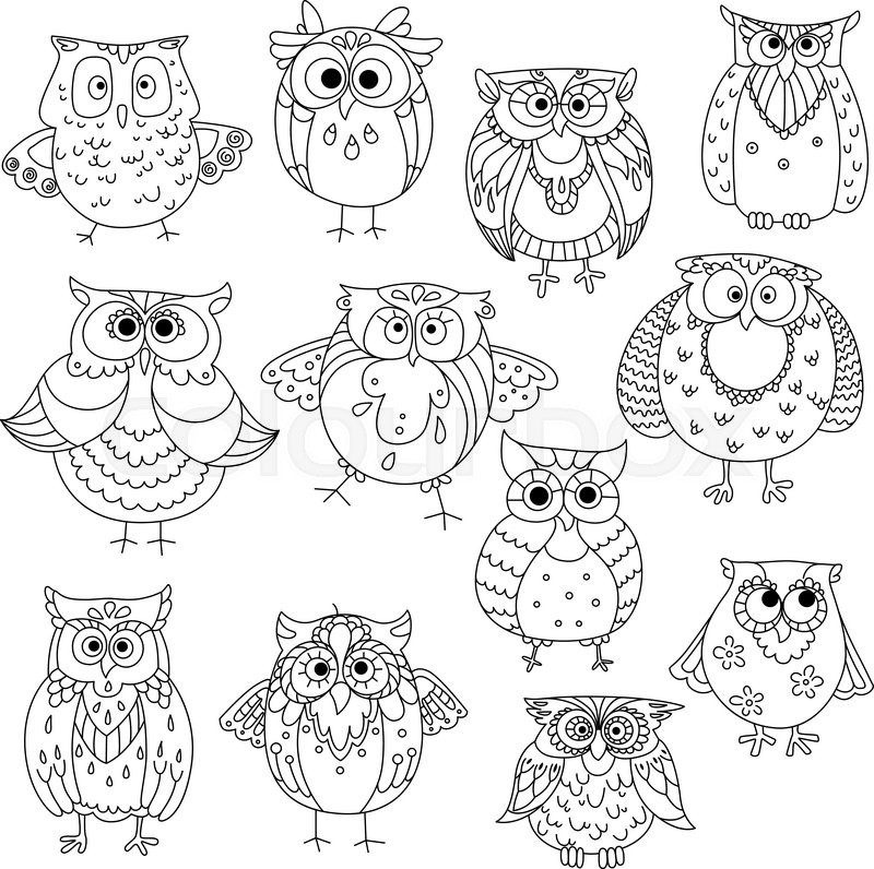 800x796 Decorative Sketches Of Cute Owls With Young Owlets, Wise Horned