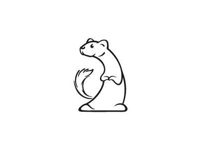 400x300 17 Best Belette (Weasel) Images On Ferrets, Baby Deer