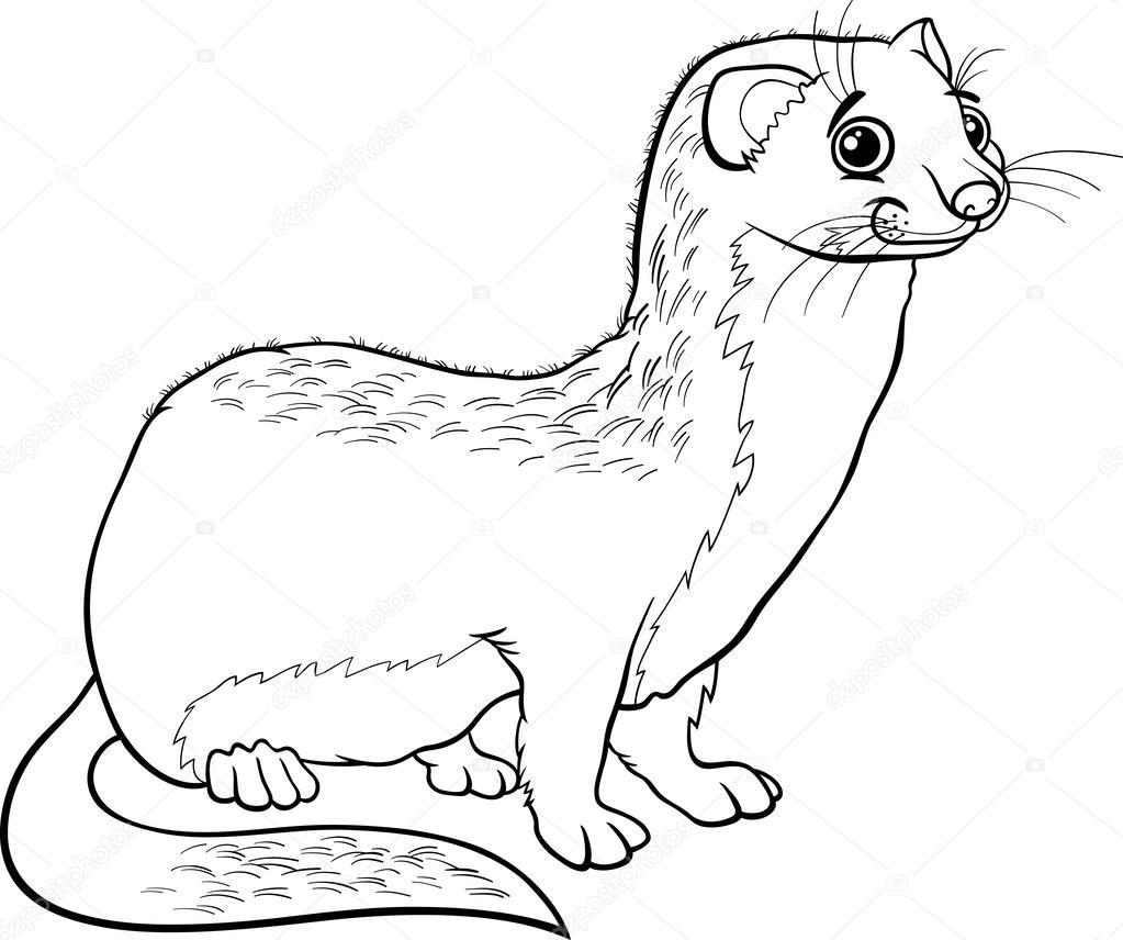 1023x856 Weasel Cartoon Drawing Cute Cartoon Drawing Of A Weasel