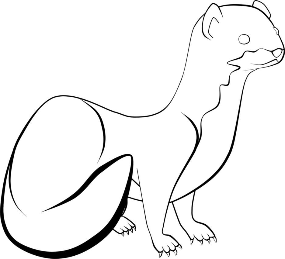937x852 Weaselmustelid Lineart By Kageitachi