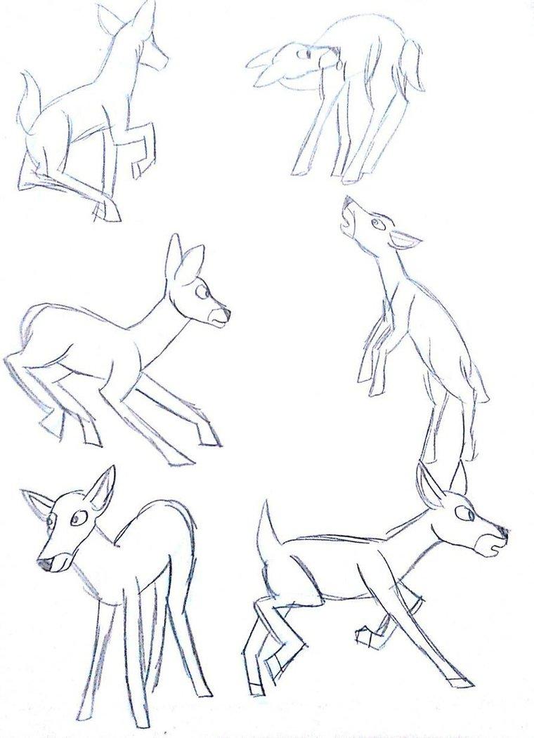 760x1051 Deer Pose Practice By Weasel Girl