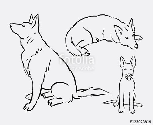 500x408 German Shepherd Pet Dog Animal Drawing. Good Use For Symbol, Logo
