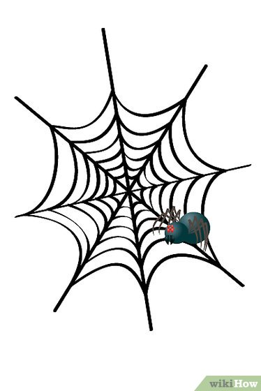374x560 How To Draw A Cobweb 3 Steps (With Pictures)