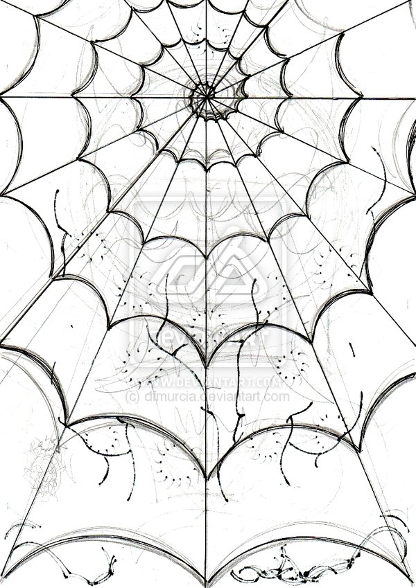 600x849 Spider's Web Sketch By Dfmurcia On Curiosities
