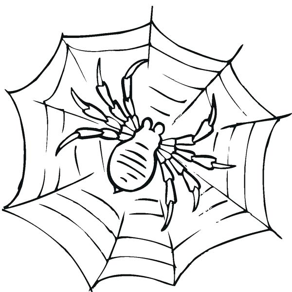600x600 Preschool Spider Web Coloring Page For Sweet Draw Photo Free Pages