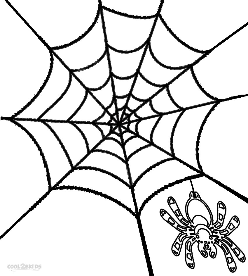 850x944 Spider Web Coloring Page Free Preschool To Fancy Draw Pict