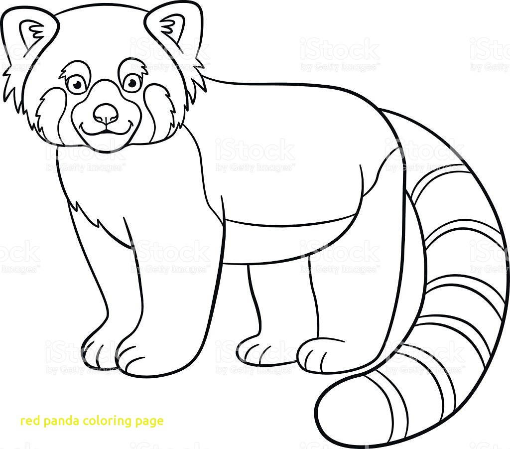 1024x901 Red Panda Coloring Page With Webkinz
