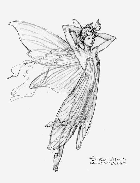 564x736 Fairy Vii By Iain Mccaig Arties Character Design