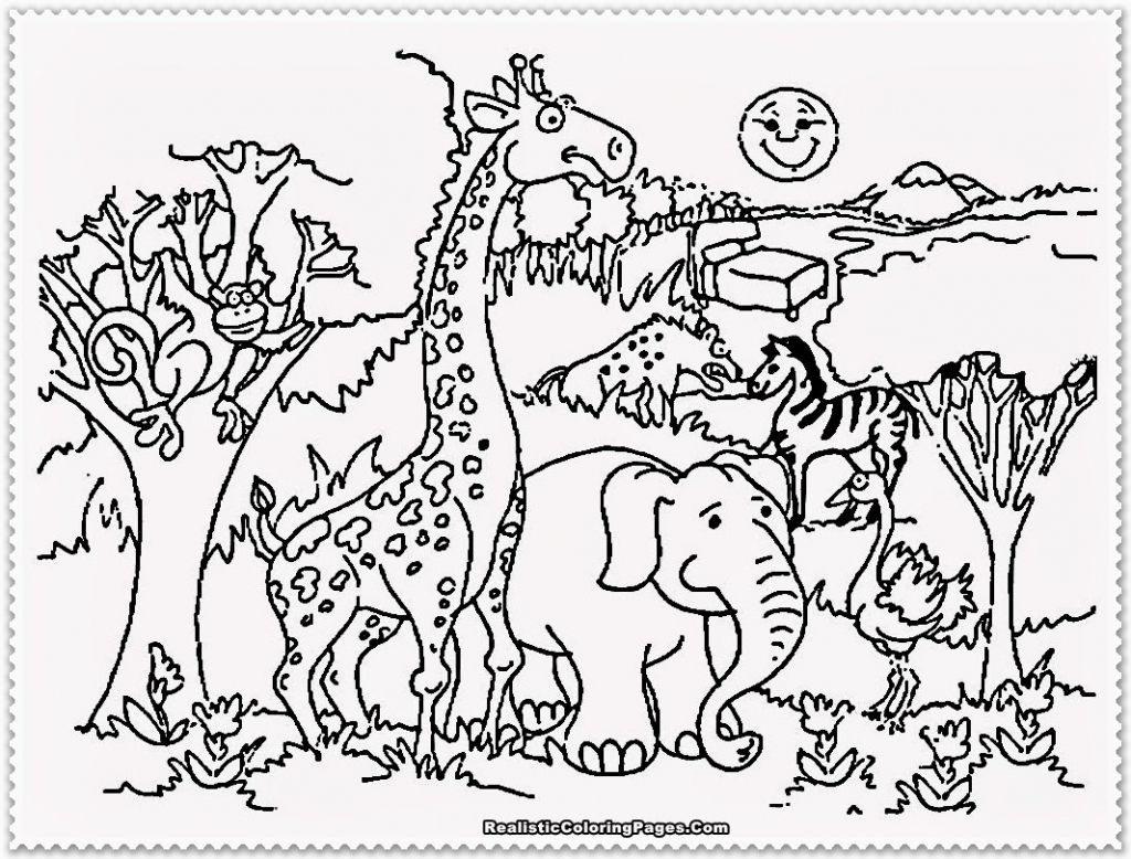 1024x778 Zoo Drawing For Children Zoo Coloring Pages For Animal Lovers