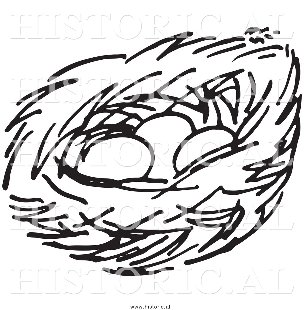 1024x1044 Nest Drawing Clipart Amp Nest Drawing Clip Art Images