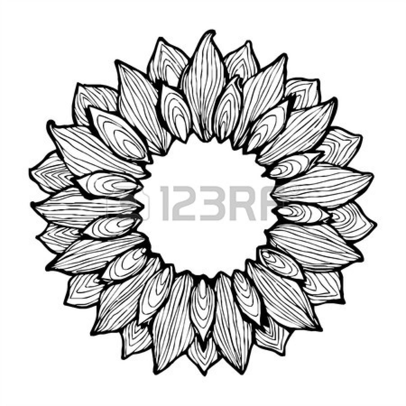 1350x1350 Sunflower Pencil Drawing Clipart Panda
