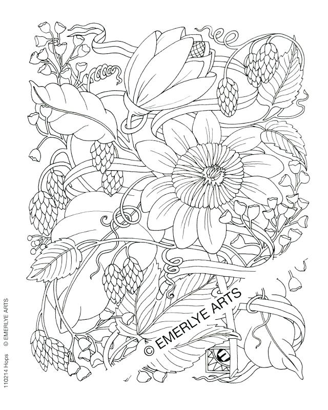 Websites Free Drawing at GetDrawings.com | Free for personal use ...