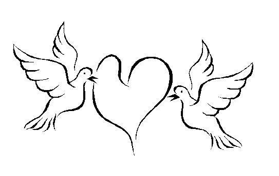 543x344 Clipart Dove Free Wedding