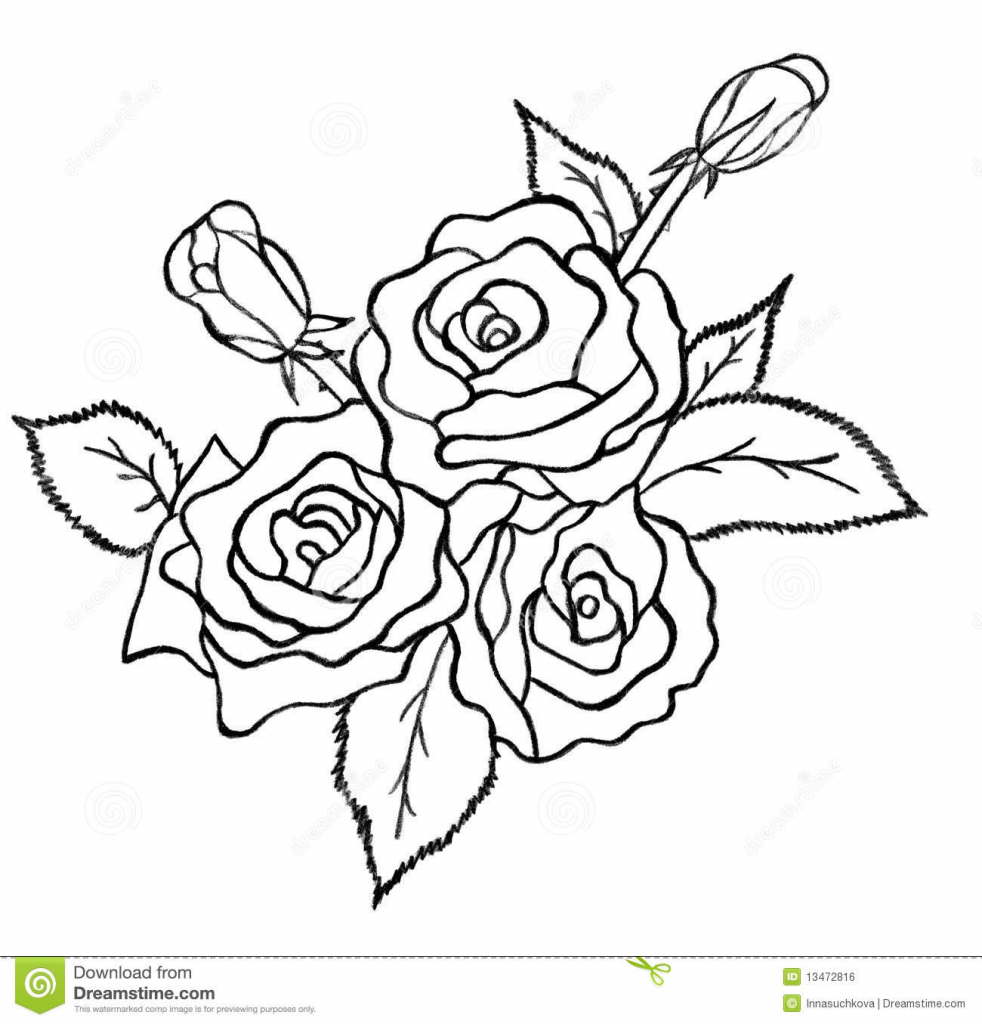 982x1024 Rose Flower Bunch Sketch Images Wedding Flower Bouquet Drawing
