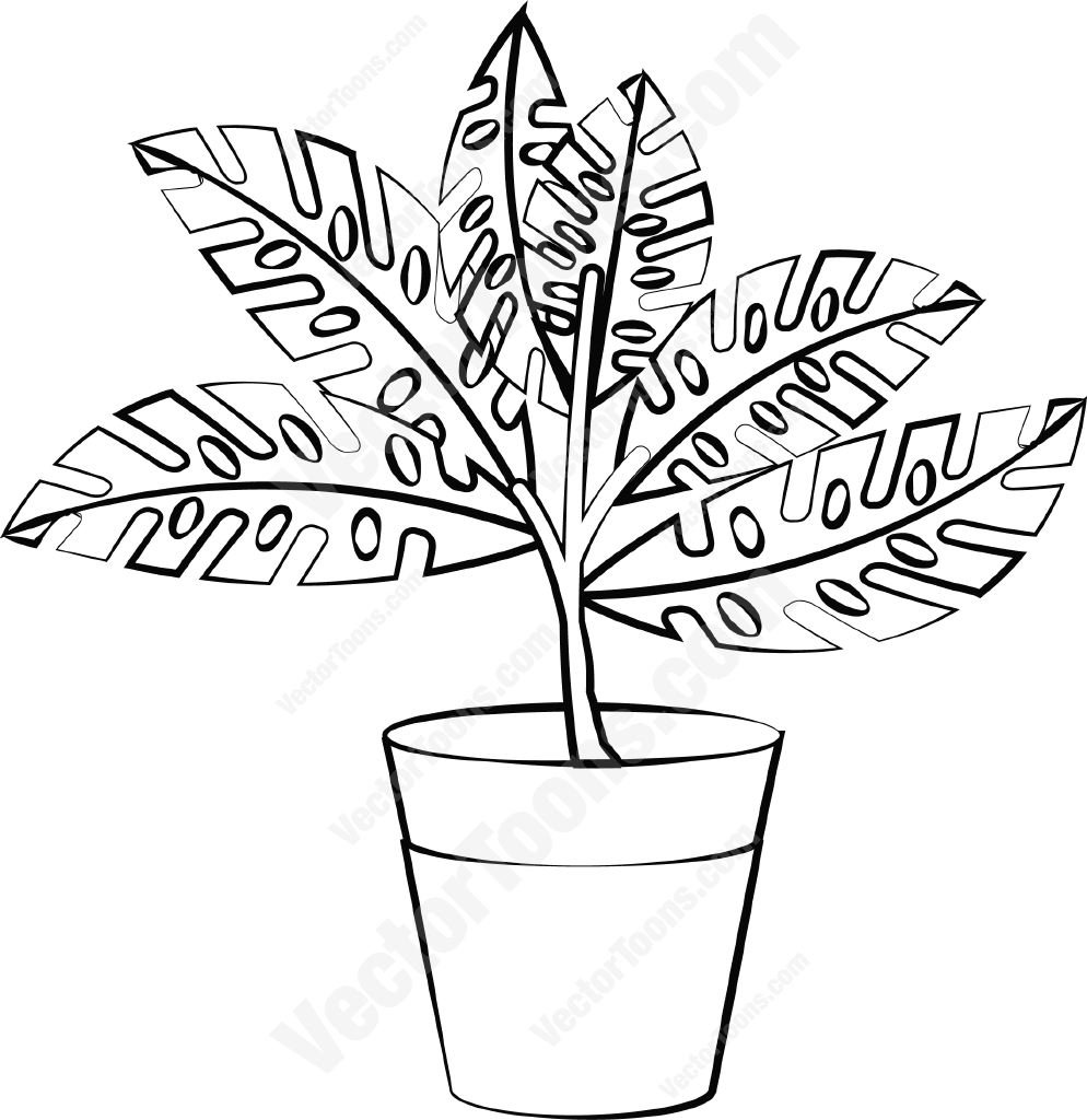 994x1024 Plant In A Pot Cartoon Clipart