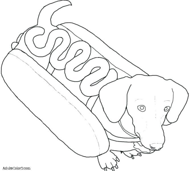 678x600 Dogs Coloring Page Dachshund Coloring Pages Dachshund Dog Dog