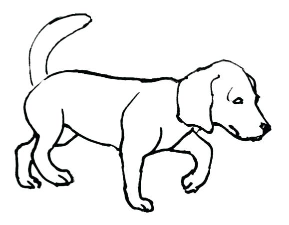 579x451 Dogs Coloring Pages Dachshund Coloring Pages Dachshund Dog Dog