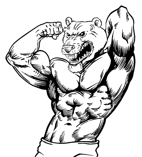545x600 Mascot Decals Bear Mascot Decals Weight Lifting Bears Mascot