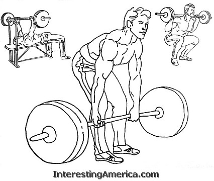 426x360 Powerlifting Will Most Certainly Continue As A Popular Sport