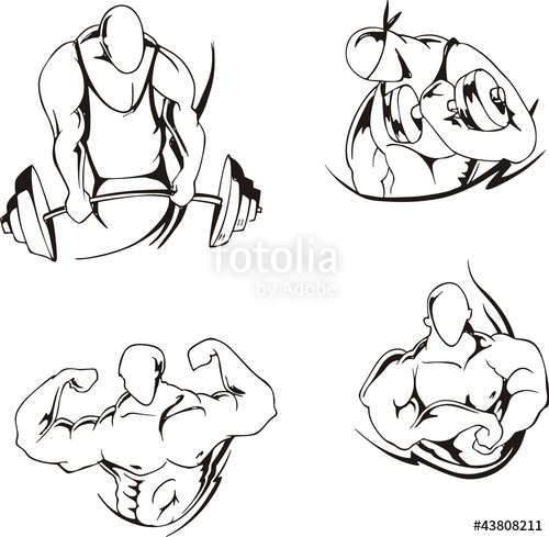 500x489 Weight Lifting And Bodybuilding Stock Image And Royalty Free
