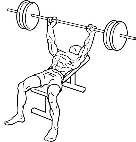 Weight Lifting Drawing